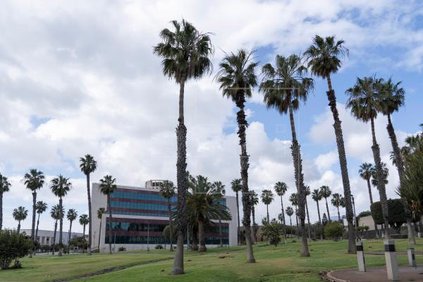 Sanidad habilita nuevos puntos de vacunación masiva en Tenerife