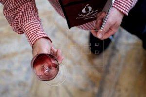 """Diez vinos de Gran Canaria, clasificados como """"excelentes"""" y """"muy buenos"""" en la Guía Peñín 2022"""